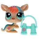Littlest Pet Shop - Postcard Pets - 1437 Kangaroo